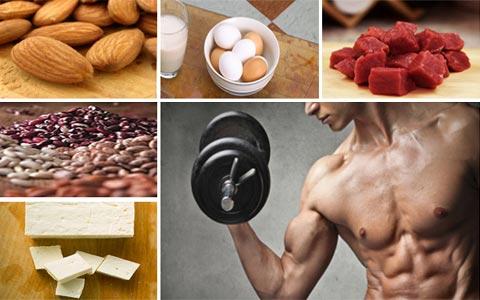 تغذیه عضله ساز