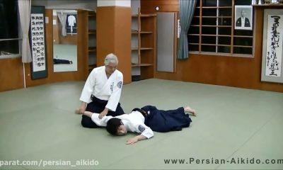 آموزش ایکیو - شیهان ایشیگاکی