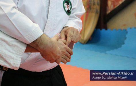قفل مفصل دفاع شخصی