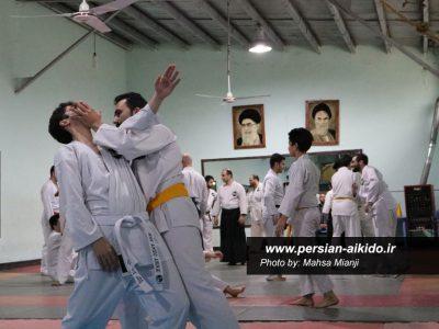 آیکیدو (دفاع شخصی)