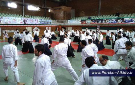 آیکیدو ایران