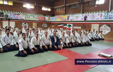 ایران آیکیدو